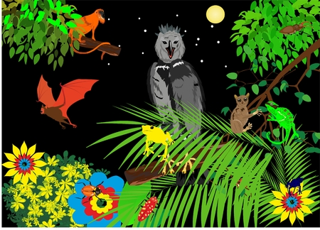 Illustration Jungle with Frog, Eagle, monkey, bat, chameleons and flowers