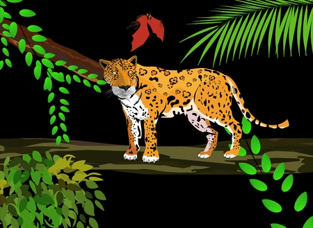 anaconda: Jungle scene with jaguar on tree and bat illustration Illustration
