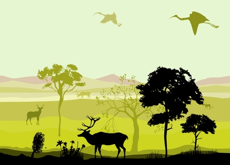 wildlife: Silhouettes of wildlife landscape