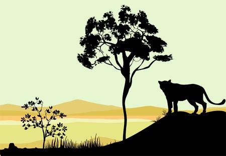 Siluetas en la escena sabana africana. leones siluetas en primer plano