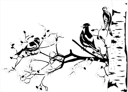 Waxwings sitting on branches of birch tree, monochrome illustration