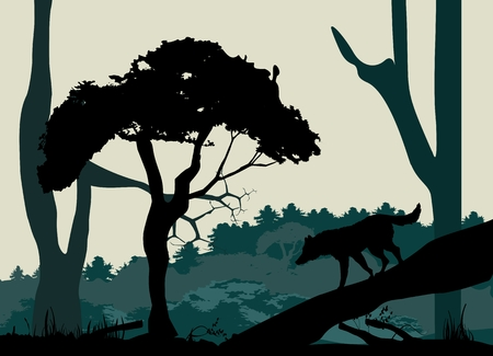 marten: Vector forest background design template with mountains and animals, wolf on tree trunk.