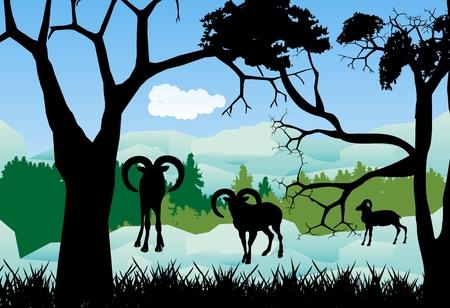Wild sheeps on mountains silhouettes Illustration