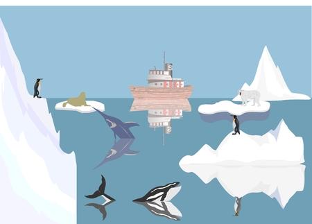 berg: Arctic ocean illustration polar animals