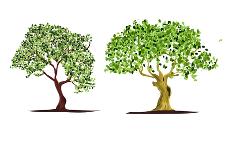 2 Vector trees isolated vector illustration