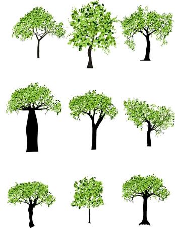 copse: Vector trees set Illustration