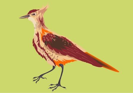 Lark wild singer bird