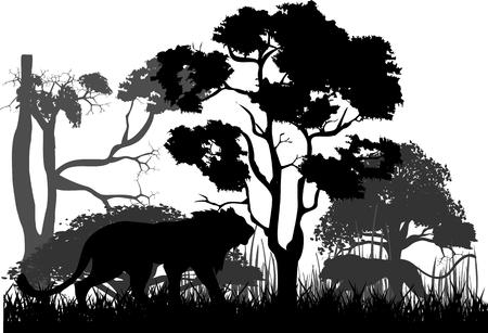 黒獅子と野生のジャングル、木をシルエットします。  イラスト・ベクター素材