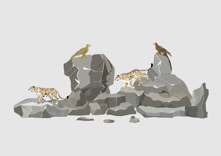 Snow leopards and eagles sitting on rocks vector illustration Illustration