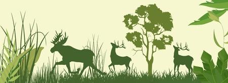 Silhouettes de vecteurs verts de wapitis et de cerfs en illustration vectorielle de forêt Banque d'images - 73786919