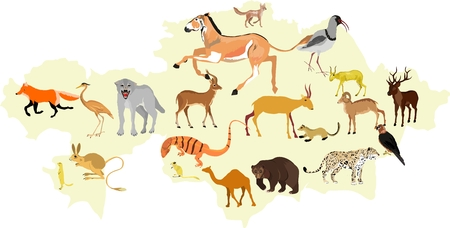 Map of wild Kazakhstan vector illustration
