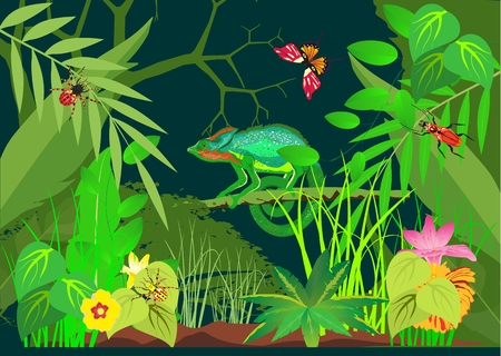 Tropical jungle with animals vector background. Chameleon Illustration