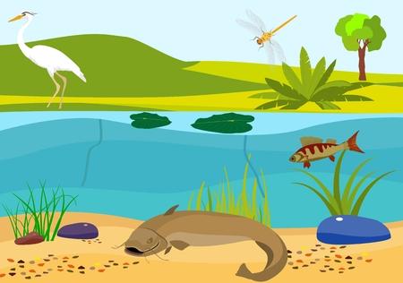 River underwater vector illustration