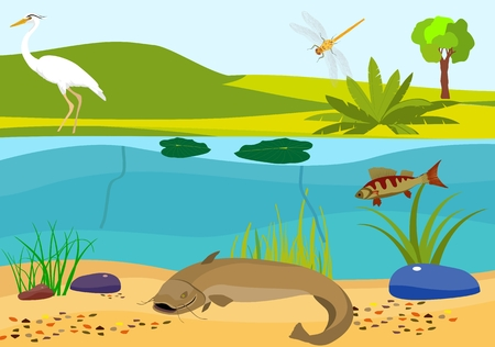 River underwater vector illustration
