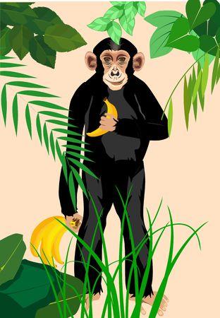 Chimpanzee standing with bananas Illustration
