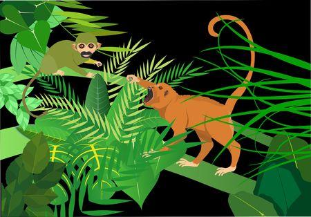 Brazilian green apes saimiri and monkey-howler vector illustration