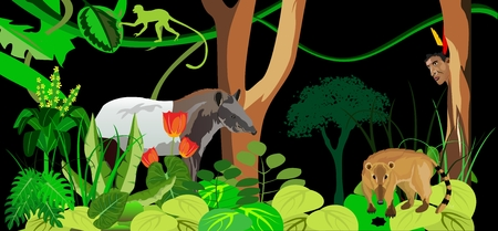 Jungle theme illustration with wild animals.