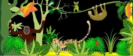 Horizontal illustration of wild tropical jungle.