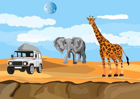 African Savannah illustration.