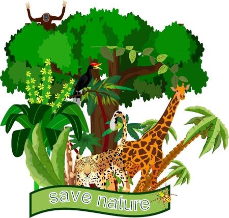 배너 뒤에 이국적인 동물과 식물로 자연과 야생 동물 테마를 저장하십시오. 스톡 콘텐츠 - 94358092