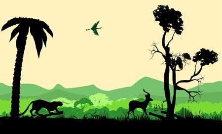 Wildlife silhouettes vector illustration, panther hunting antilope, vector wildlife landscape. Nature landscape
