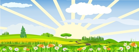 Countryside vector illustration, blowing flowers on meadow, rising sun, outdoor concept, nature landscape Vectores