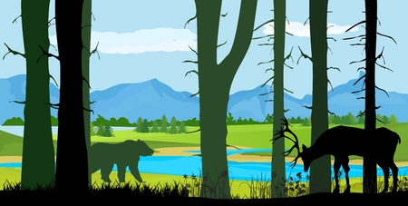 Wildlife vector silhouettes, northern forest trees and deer and bear silhouettes, wildlife concept Illustration