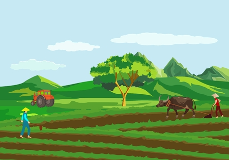 Concept countryside of china, Chinese peasants working in fields vector view, green fields, people, tractor 일러스트
