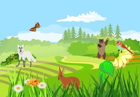 Wildlife scene, nature landscape, forest landscape bear, wolf, hare, animals, birds. Concept image