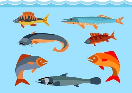 Fishes vector set, marine life theme Vettoriali