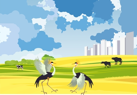 Two crane dancing in the steppe, city buildings, vector landacpe concept illustration