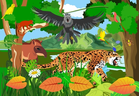 Jungle scene vector illustration with Eagle harpy, parrots, butterflies, exotic plants, jaguar, monkey, tapir rainforest fauna, vector illustration