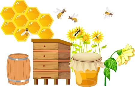 Set of beekebing theme items, hives, sunflowers, bees, honey. 向量圖像