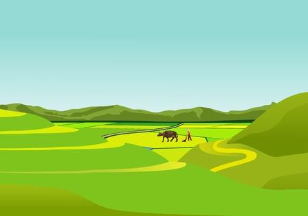 Paesaggio di campagna cinese, contadino con toro nel campo vettore Vettoriali