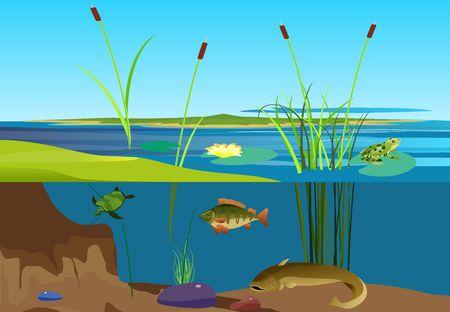 River ecosystem vector illustration
