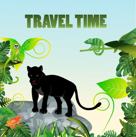 Summer Time Holiday and travel illustration with black panther on stones jungle background. Tropical floral frame with blue sky. Design template