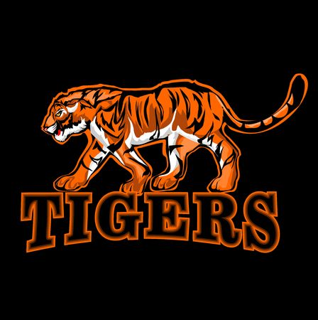 tiger in sport, logo of tiger on black background, vector