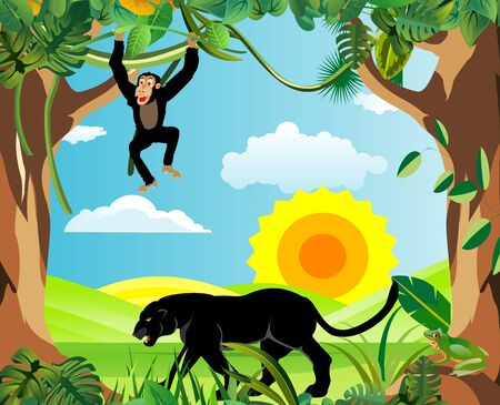 Summer Time Holiday and travel illustration with monkey and leopard on jungle wood background. Tropical floral frame with night sky. Design template 스톡 콘텐츠 - 127328063