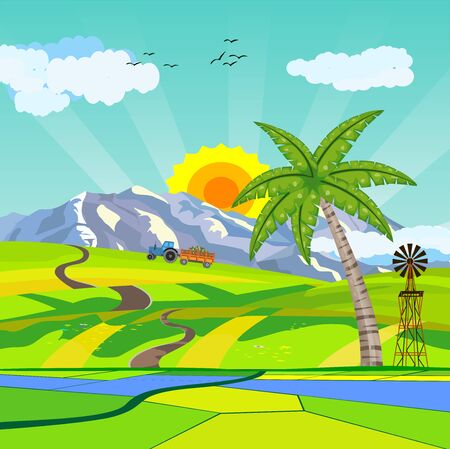 Countryside vector illustration, house on the green hills, palms in hills,  outdoor vector Çizim