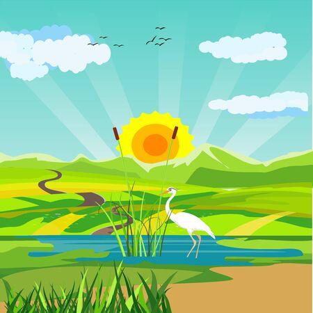 Sul lago, airone bianco sulla pianta del lago, vettore di scena della fauna selvatica della natura