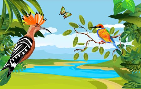 Nature wildlife scene background with  plants and Hoopoe and kingfisher birds.  floral frame on river landscape. Vector