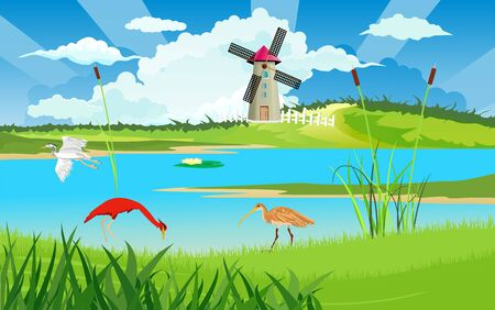 Wild birds on the river bank, wildlife nature vector illustration