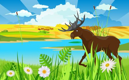 Wildlife nature scene, moose  at the river vector Stock Illustratie