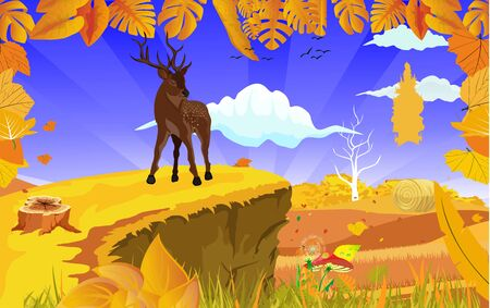landscapes of Countryside in autumn. Deer in wildlife scene, mid autumn with field, grass, forests,  and leaves falling from trees in yellow foliage. Pretty landscape in fall season.
