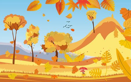 landscapes of Countryside in autumn. mid autumn with field, grass, blue sky,  and leaves falling from trees in yellow foliage. Pretty landscape in fall season.