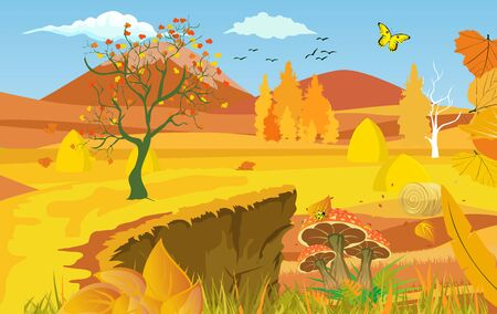 landscapes of Countryside in autumn. mid autumn with field, blue sky, forests, grass and leaves falling from trees in yellow foliage. Pretty landscape in fall season.
