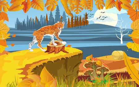landscapes of wildlife in autumn. Lynx in wildlife scene, with field, grass, forests, and leaves falling from trees 일러스트