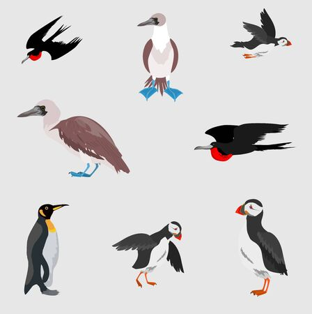 Sea birds collection, isolated on white vector Ilustracja