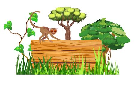 Isolated on white jungle background, tarsier sitting on the wooden boards  in the jungle, vector, wildlife scene