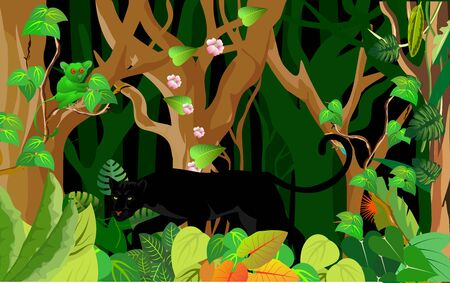 Night jungle background, hunting panther in the jungle, vector, wildlife scene Ilustracja
